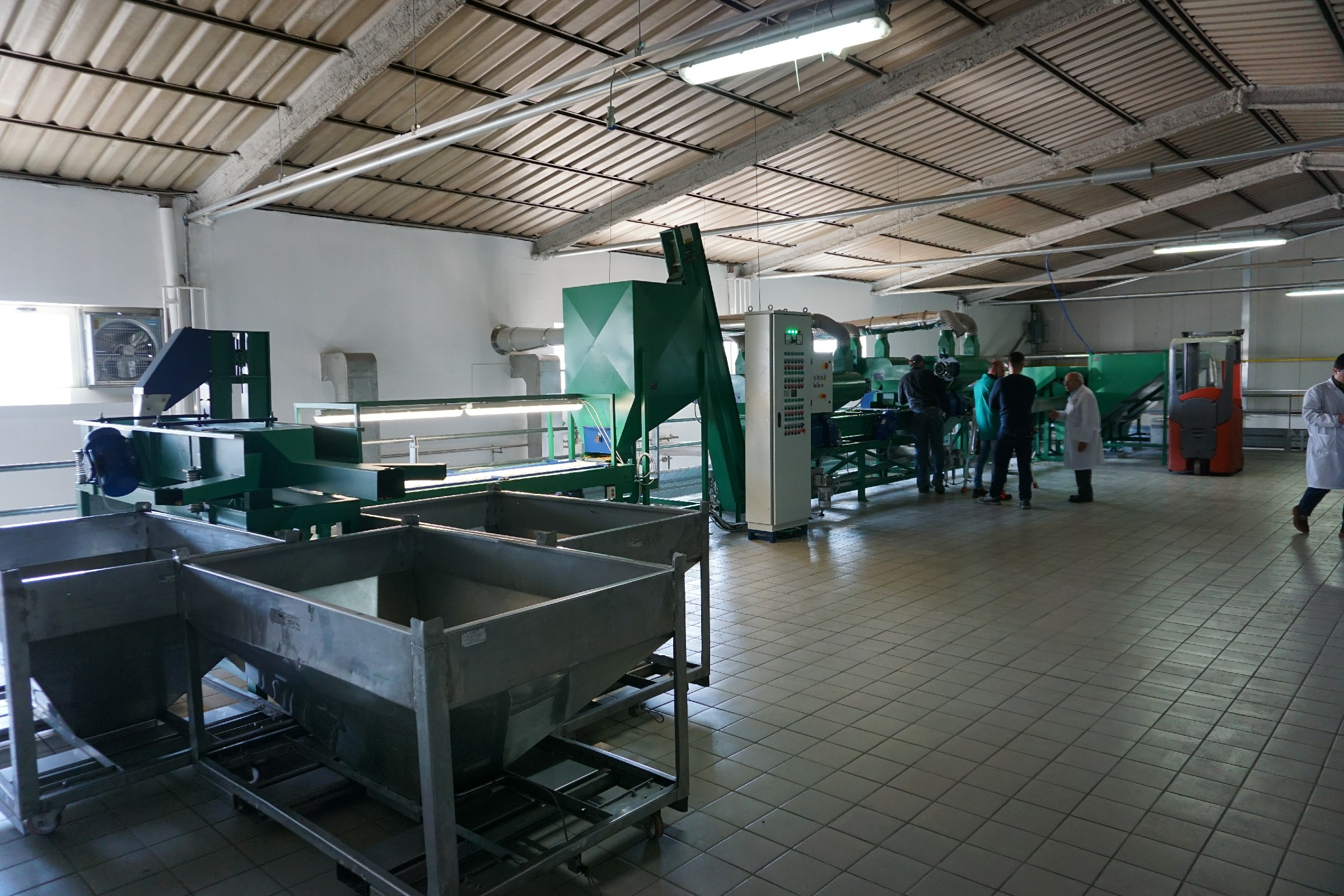 walnut shelling line